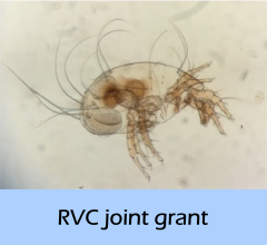 RVC_joint_grant