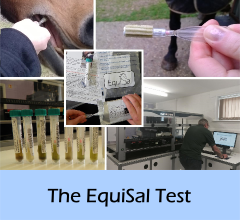 The_EquiSal_test_A