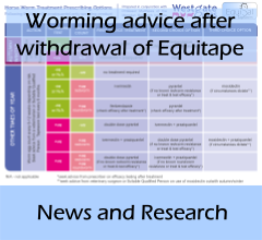 front_news-Equitape