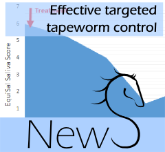 front_news-effective_targeted