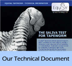 technical_document
