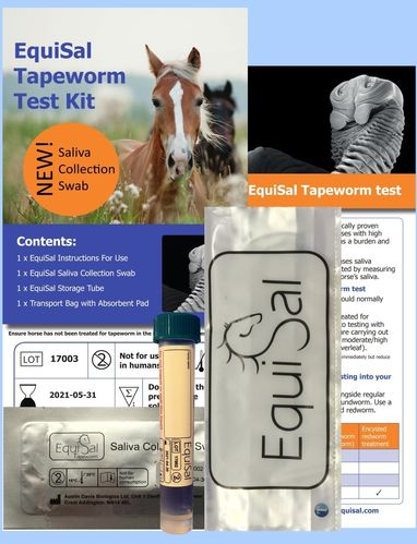 EquiSal Tapeworm Test and kit